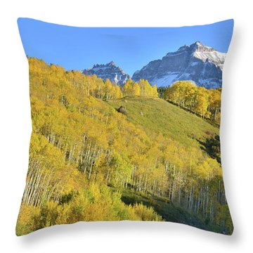 Throw Pillow featuring the photograph County Road 7 Fall Colors by Ray Mathis