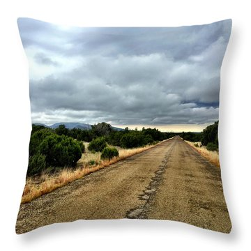 County Road Throw Pillow