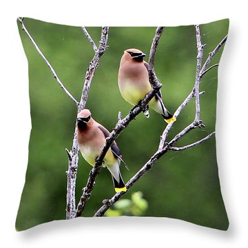 Couple Cedar Waxwing Throw Pillow by Marle Nopardi