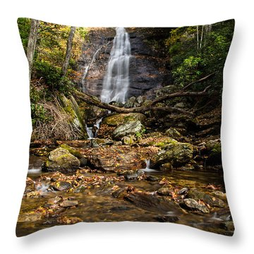 Courthouse Falls Throw Pillow