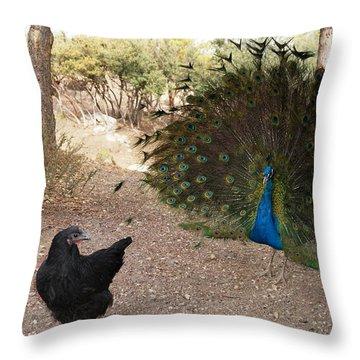 Courtship Throw Pillow