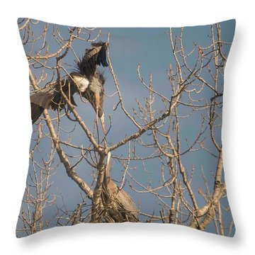 Throw Pillow featuring the photograph Courtship Ritual Of The Great Blue Heron by David Bearden