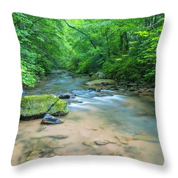 Throw Pillow featuring the photograph Cove Creek Panorama by Ranjay Mitra