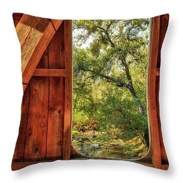 Throw Pillow featuring the photograph Covered Bridge Window by James Eddy