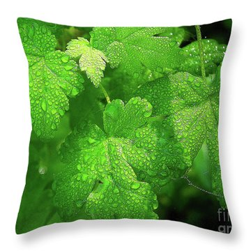 Covered In Rain Drops Throw Pillow by Michele Penner