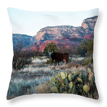 Cow At Red Rock Throw Pillow