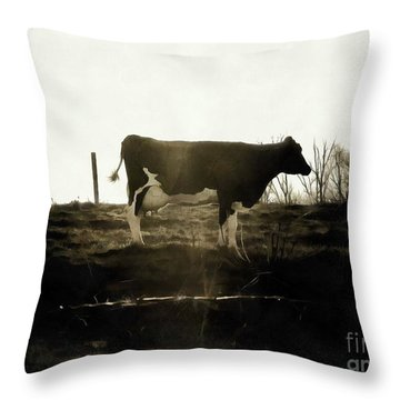 Throw Pillow featuring the photograph Cow - Black And White - Profile by Janine Riley
