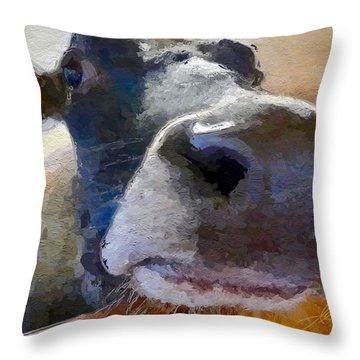 Cow Face Close Up Throw Pillow