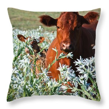 Cow Hide Throw Pillow