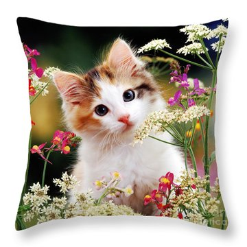 Cow Parsley Cat Throw Pillow