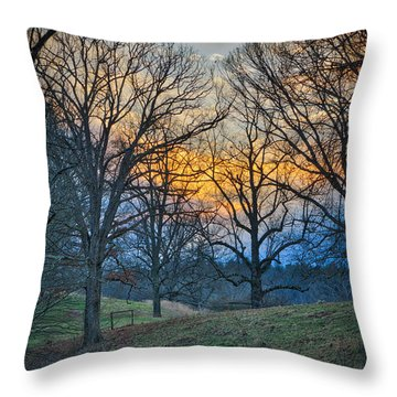 Cow Pasture At Dusk Throw Pillow