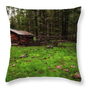Cowboy Camp Throw Pillow