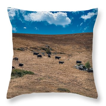 Cowboy Country Throw Pillow by Patrick Boening