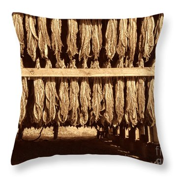Cowboy Staple Throw Pillow by American West Legend By Olivier Le Queinec
