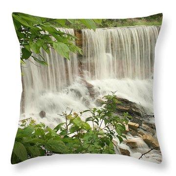 Cowley Falls Throw Pillow