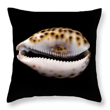 Cowry Sea Shell Throw Pillow by Jim Hughes