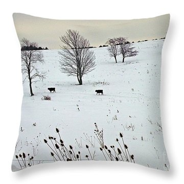 Throw Pillow featuring the photograph Cows And Thistles by Christian Mattison