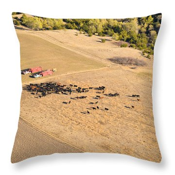 Cows And Trucks Throw Pillow