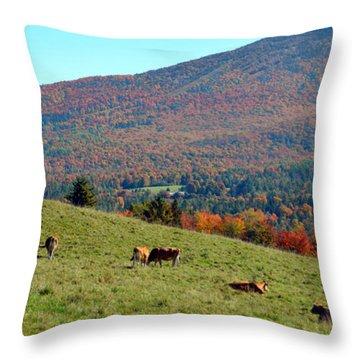 Cows Enjoying Vermont Autumn Throw Pillow by Catherine Sherman
