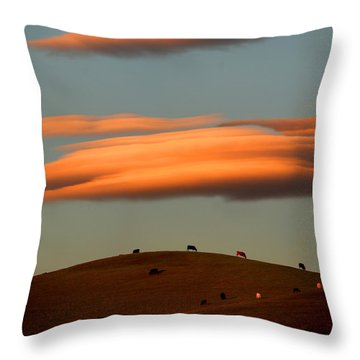 Cows Graze Under The Sunset Clouds In Sonoma County California Throw Pillow by Wernher Krutein