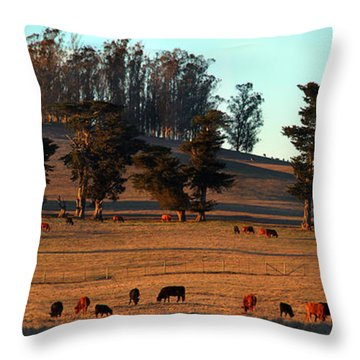 Cows Grazing Into The Sunset In Marin County California Throw Pillow by Wernher Krutein