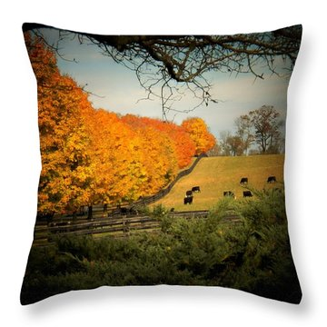 Cows In The Meadow Throw Pillow