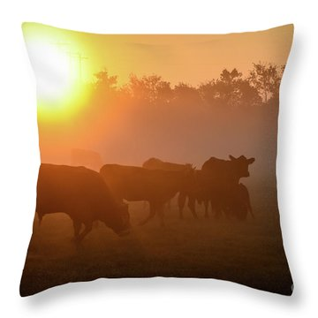 Cows In The Sunrise Mist Throw Pillow