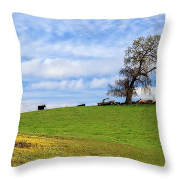 Throw Pillow featuring the photograph Cows On A Spring Hill by James Eddy