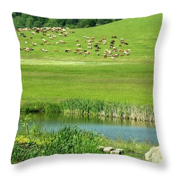 Cows On Pasture Near Lake Throw Pillow