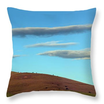 Cows Peacefully Graze On The Hills Of Sonoma County California Throw Pillow by Wernher Krutein