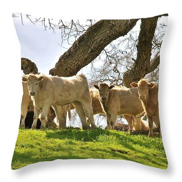 Cows Under Oak #2 Throw Pillow
