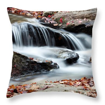 Coxing Kill In Autumn #1 Throw Pillow by Jeff Severson