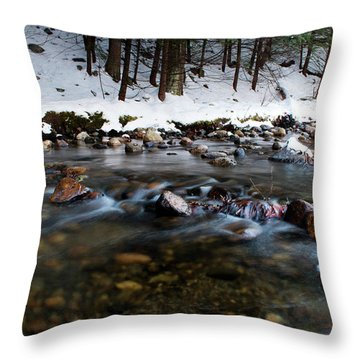 Coxing Kill In December #1 Throw Pillow by Jeff Severson