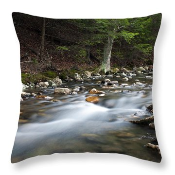 Throw Pillow featuring the photograph Coxing Kill In February #1 by Jeff Severson