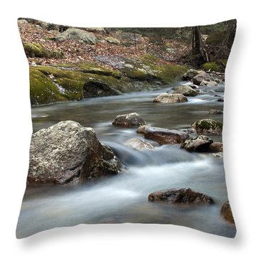 Throw Pillow featuring the photograph Coxing Kill In February #2 by Jeff Severson