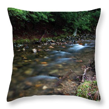 Coxing Kill On Earth Day 2017 I Throw Pillow by Jeff Severson