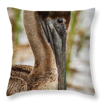 Coy Pelican Throw Pillow by Jean Noren