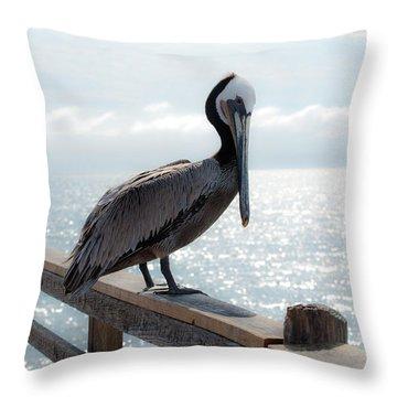 Coy Pelican Throw Pillow