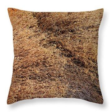 Coyote Brush Throw Pillow