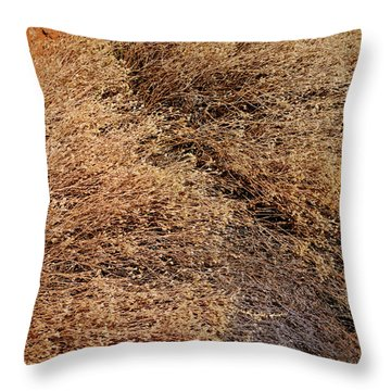 Coyote Brush Throw Pillow
