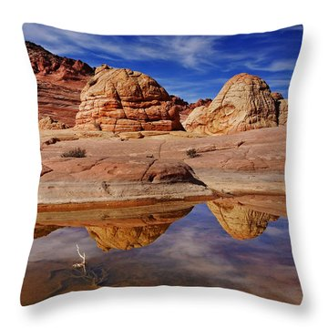 Coyote Butte Reflections Throw Pillow by Mike  Dawson