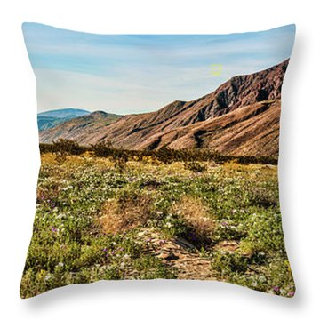 Coyote Canyon Meadow View Throw Pillow