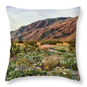 Coyote Canyon Sweet Light Throw Pillow
