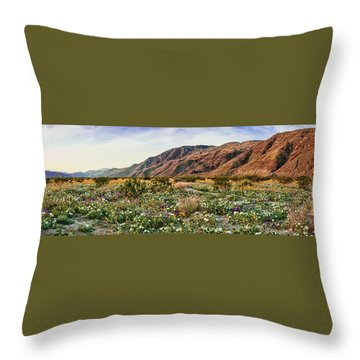 Coyote Canyon Sweet Light Throw Pillow by Daniel Hebard