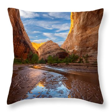 Throw Pillow featuring the photograph Coyote Gulch by Dustin LeFevre