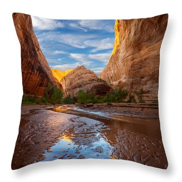 Coyote Gulch Throw Pillow