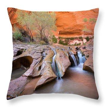 Coyote Gulch Throw Pillow