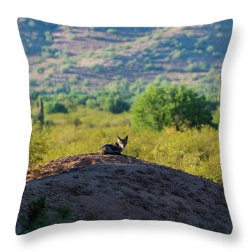 Coyote Hill Throw Pillow