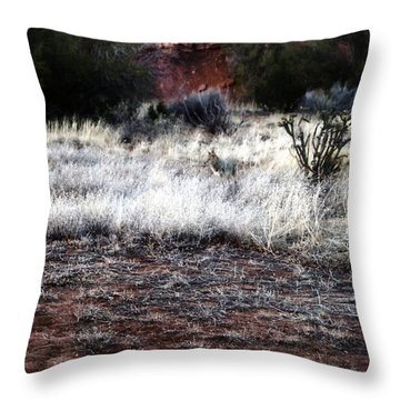 Throw Pillow featuring the photograph Coyote by Joseph Frank Baraba