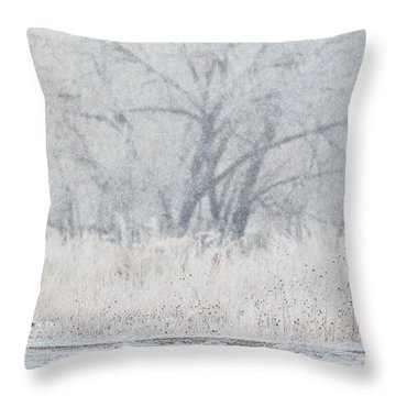 Coyote On The Hunt Throw Pillow